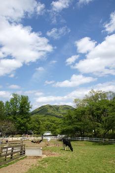 2011-0507-01.jpg